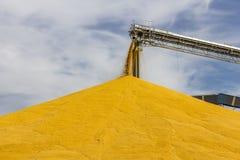 Mais und Korn, die Anschluss behandeln oder ernten Mais kann für Lebensmittel, Zufuhr oder Äthanol III benutzt werden Stockbild