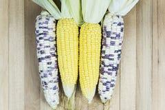 Mais und Produkte Stockbilder