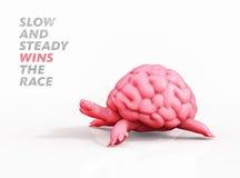 Mais vale quem muito trabalha do que quem muito madruga Ilustração do cérebro 3D da tartaruga Foto de Stock Royalty Free