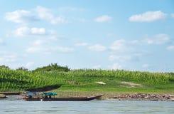 Maisbauernhof nahe dem Khong Fluss Stockbild