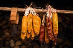 Maisendenglocke Lizenzfreie Stockbilder