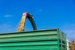 Maisernte auf Ackerland in Slowenien Die Silage ist gepumptes direc Lizenzfreie Stockbilder