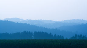 Maisfeld und schattierte Hügel stockfotografie