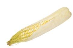 Maiskörner getrennt auf Weiß Lizenzfreie Stockbilder