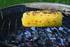 Maiskolben auf heißem Holzkohlengrill der runden Form stockfotos