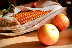 Maiskolben und Äpfel stockfotografie