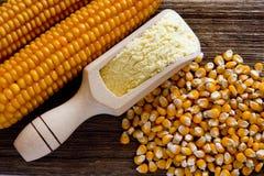 Maismehl de maïs Photographie stock