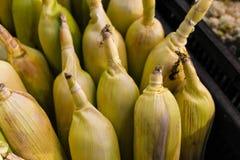 Maisnahaufnahmeschuss-Nahrungsmittelgelbes organisches stockfotografie