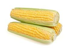 Maisohren Stockbild