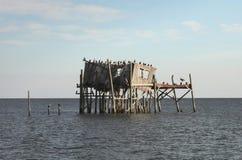 Maison abandonnée d'échasse dans la clé de cèdre, la Floride Photo libre de droits