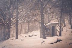 Maison abandonnée de fantôme dans la forêt sauvage avec le brouillard et la neige Image stock