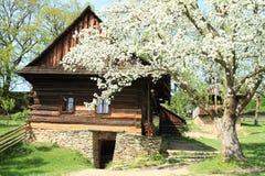 Maison boisée avec la cave en pierre dans le musée en plein air photographie stock