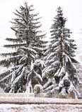 Maison cachée par la neige Photographie stock
