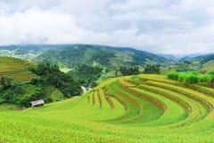 Maison d'échasse sur le gisement en terrasse de riz avec les montagnes et les nuages photos libres de droits