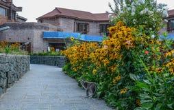 Maison d'été avec le jardin d'agrément photo libre de droits