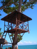Maison d'arbre trouvée dans Desaru, Malaisie Images stock
