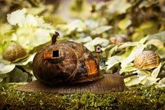 Maison d'escargot Image libre de droits