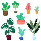 Maison d'intérieur, plantes d'intérieur modernes de style de bureau Usines de couleur verte dans le pot illustration libre de droits