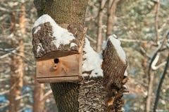 Maison d'oiseau. Élevage de cabine sur l'arbre Photographie stock libre de droits