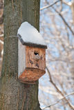 Maison d'oiseau. Élevage de cabine sur l'arbre Images libres de droits