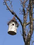 Maison d'oiseau Images libres de droits