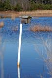 Maison d'oiseau dans l'eau Photographie stock libre de droits
