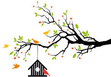 Maison d'oiseau sur l'arbre de source,   Image stock