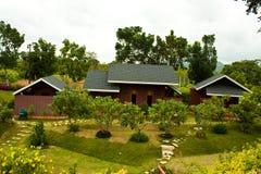 Maison dans la forêt Image libre de droits