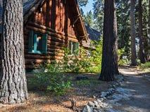 Maison dans la forêt Photos stock