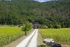Maison de campagne près d'Arezzo (Toscane) Photo stock