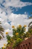 Maison de Fayoum Photographie stock