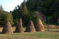 Maison de ferme de champs de meules de foin Images stock