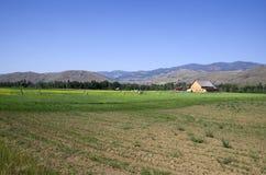 Maison de ferme de désert Image libre de droits