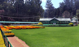 Maison de fleur dans le jardin Photos libres de droits