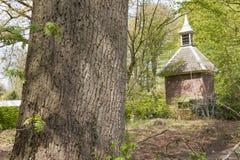 Maison de pigeon dans le paysage de forêt Image libre de droits