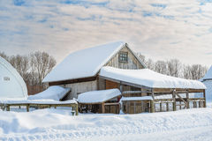 Maison de poule de bâtiments de ferme Photographie stock libre de droits