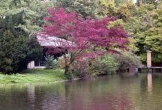 Maison de thé japonaise dans le jardin anglais à Munich, maison de thé germanyjapanese dans le jardin anglais à Munich, Allemagne Photographie stock
