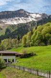 Maison de village dans les montagnes Pâturage des vaches photographie stock libre de droits