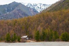 Maison en bois abandonnée dans la forêt Photo stock