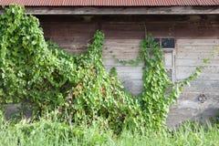Maison en bois d'abandon Images stock