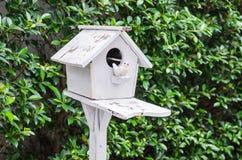 Maison en bois d'oiseau avec le vert photo stock
