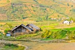 Maison en bois dans des collectes de riz images stock