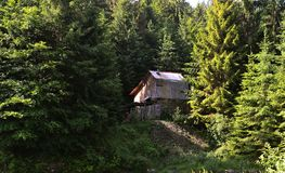 Maison en bois du forestier dans la belle forêt dense des Carpathiens photos stock