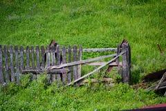 Maison en bois en Roumanie Photo stock