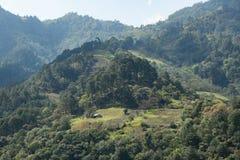 Maison en bois parmi la forêt dans les montagnes du Mexique photos libres de droits