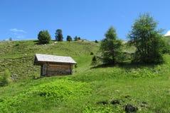 Maison en bois sur la colline verte Photos libres de droits