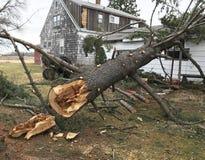Maison endommagée par l'arbre tombé Photo stock