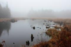 Maison et étang brumeux de castor de matin image stock