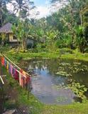Maison et jardin dans Bali Photo libre de droits