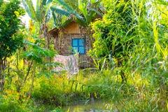 Maison et jardin en osier dans le delta du Mékong, Vietnam Photo stock